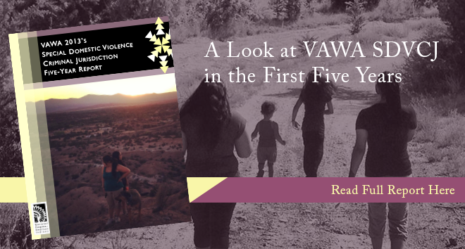 VAWA 2013's SDVCJ Five Year Report